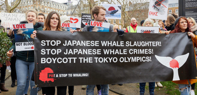 Protestors march in London against Japan resuming commercial whaling.
